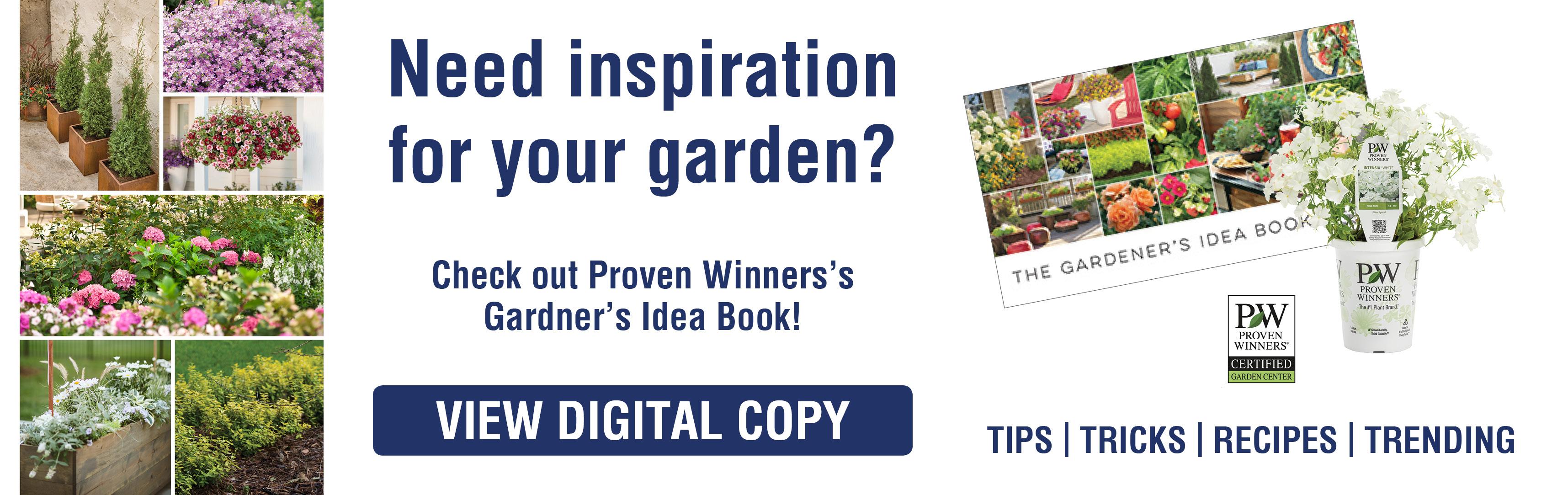 June-2019-Flyer-Slider-GARDNER-IDEA-BOOK10-2